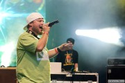 Reggae nad Wartą 2013
